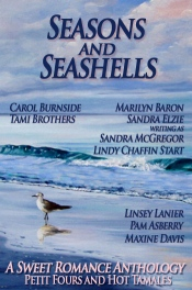 Cover art for Seasons and Seashells, a sweet romance anthology