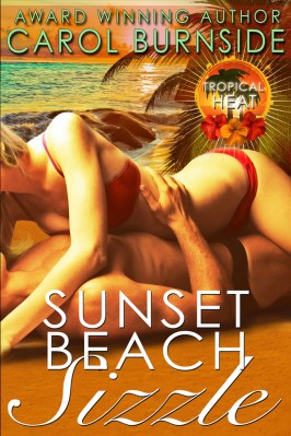 sunset-beach-sizzle-e-reader-copy